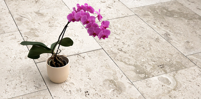 Composizione pavimento in Aurisina Fiorita SPAZZOLATA