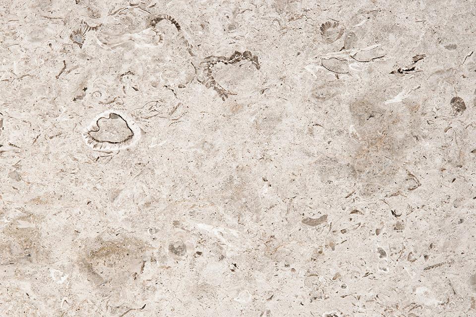 Variazione marmo di Aurisina Fiorita #1