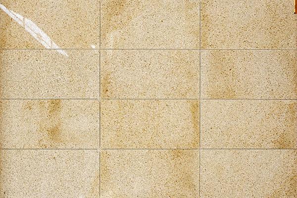 PAGLIA granite Flooring Tiles